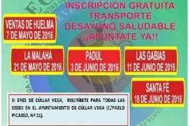 I Encuentros Deportivos VEGATEM