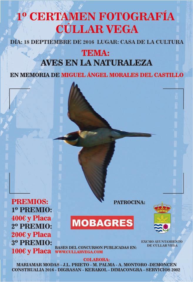 Inauguración y Entrega de Premios del 1er Certamen de Fotografía de Cúllar Vega