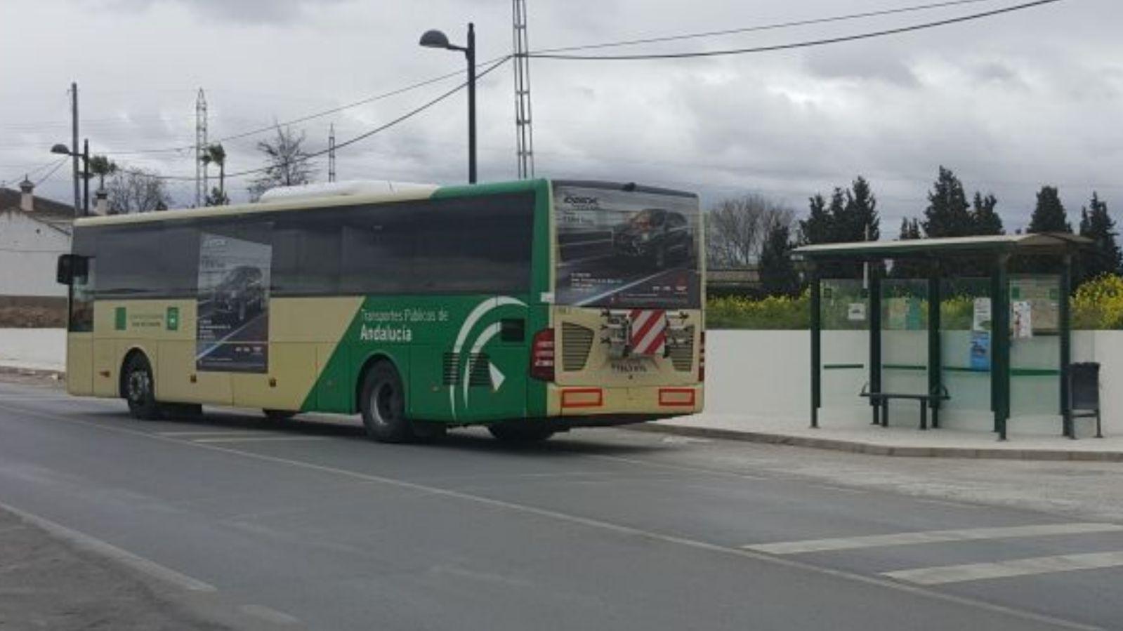 Cúllar Vega solicitará ajustes y refuerzos en los nuevos horarios de autobuses