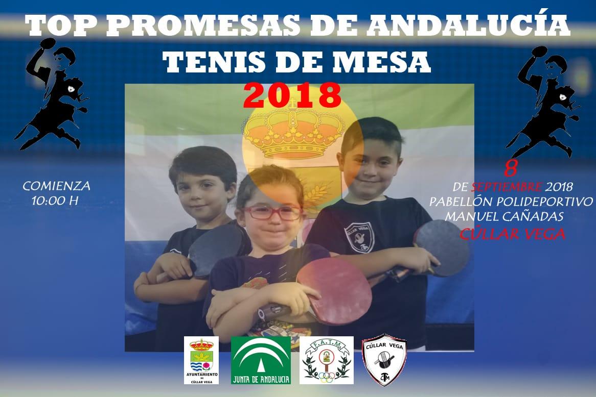 Más de 30 jóvenes promesas participarán en el V Torneo de Tenis de Mesa de Cúllar Vega