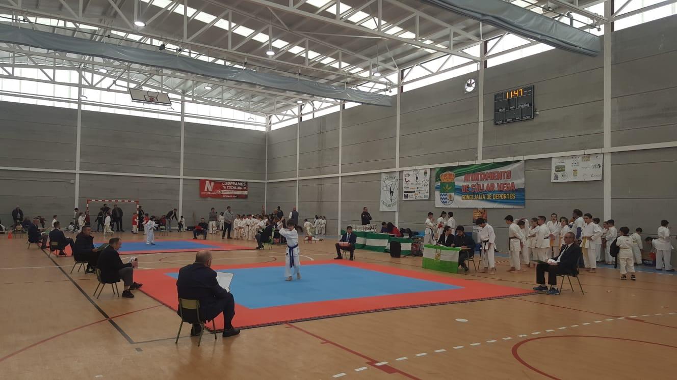 Más de 200 jóvenes deportistas participanen el IV Campeonato de Kárate Cúllar Vega