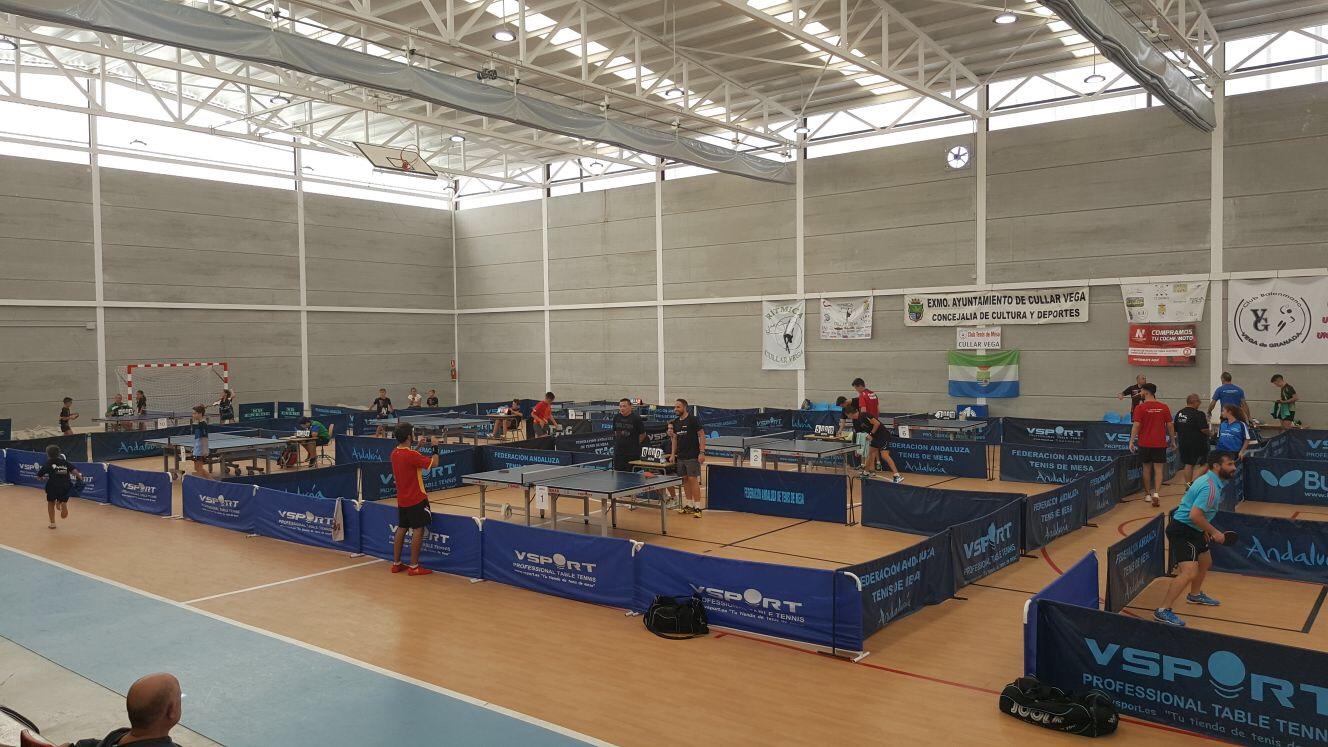 Más de 80 jóvenes palistas participarán en el Top Promesas de Andalucía de Tenis de Mesa en Cúllar Vega