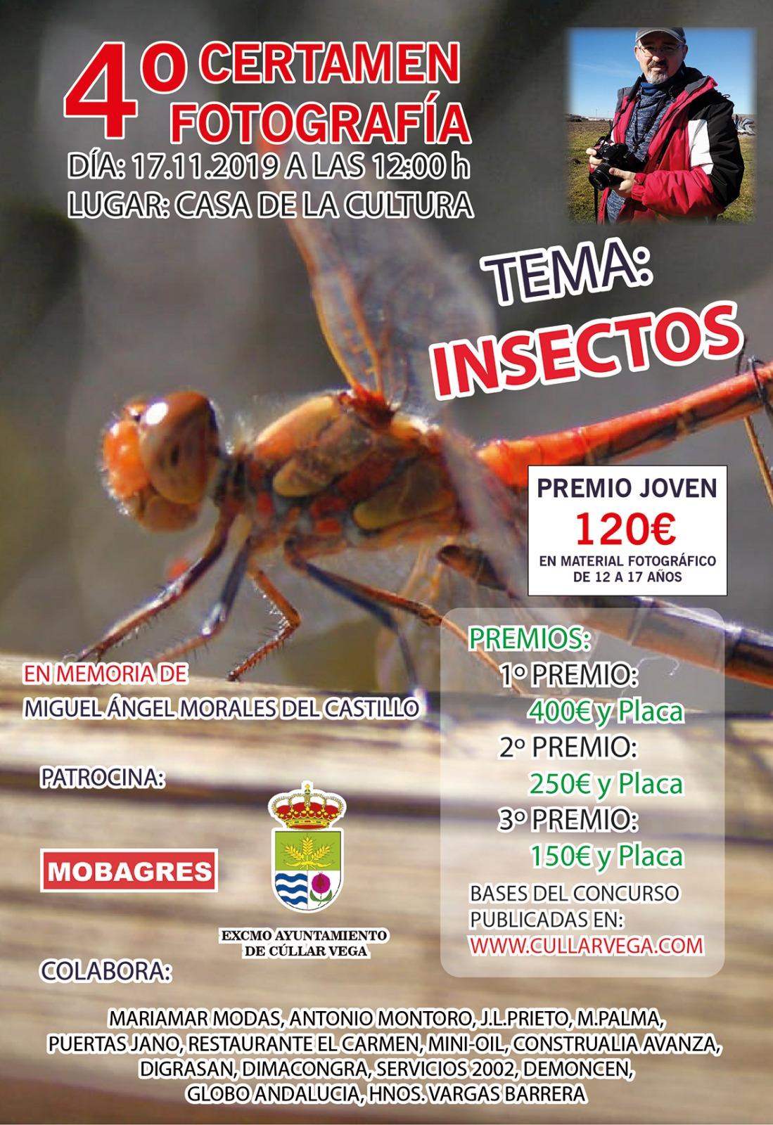 El IV Concurso de Fotografía de Cúllar Vega premiará las mejores imágenes de insectos