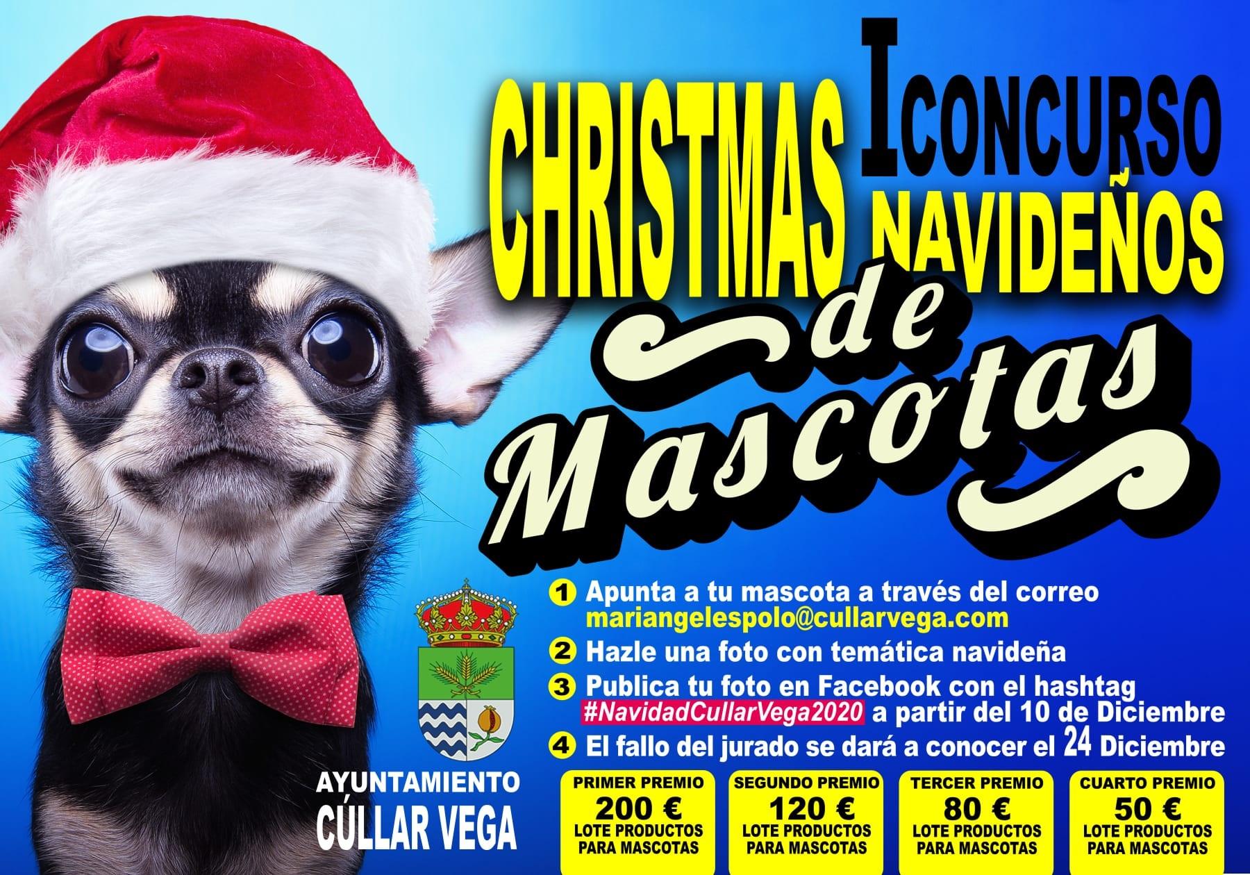 I Concurso de Christmas de Mascotas