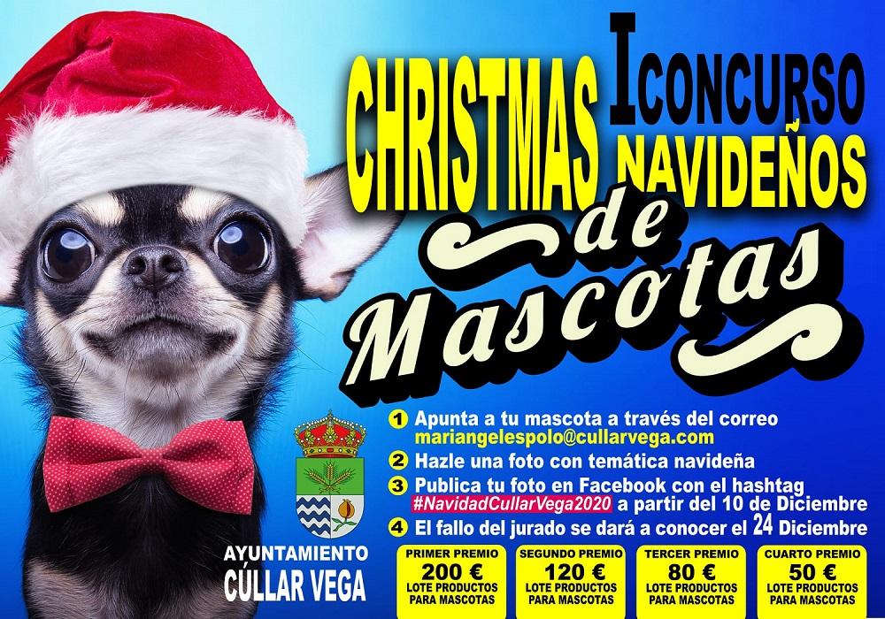 Cúllar Vega premiará las fotos más divertidas en su I concurso de Christmas de Mascotas