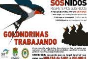 Cúllar Vega conciencia a sus vecinos de la necesidad de cuidar los nidos de las golondrinas